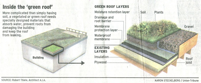Green Roofs In San Diego